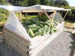 Hochbeet in Gemeinschaftsgärten